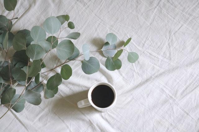 bílý hrnek s kávou vedle rostliny